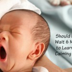 Should Babies Wait Six Months to Learn Self Calming Skills?